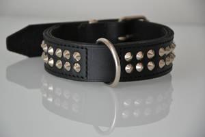 Spike Collar by mastertinner