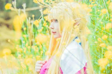 Princess Zelda by YukoUzumaki