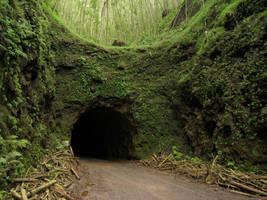 Hawaii Cave by chocolateir-stock