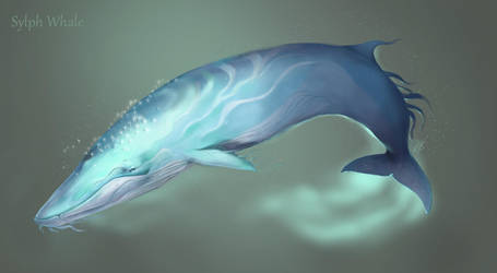 Sylphe Whale by BlackBy