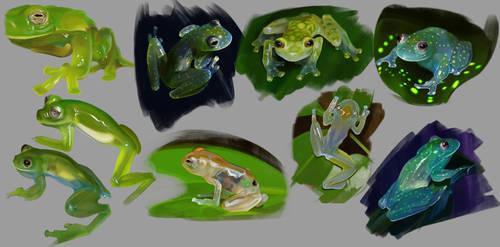 Frogs by JulianDeLio