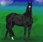Black Beauty  by werewwulf