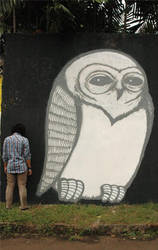 a BIG owl by dernor