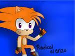 Radical the Hedgehog (Regalo para Dismotron) by ChicaOtakuNya11