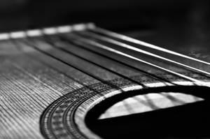 The Rhythm by Evenio