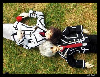 Vampire Knights by mizunoyukino