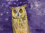 Long-eared owl - purple mood by Oksana007