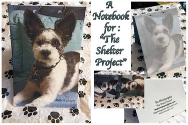 A Notebook for-The Shelter Project by TeaPhotography