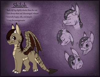 Character ref sheet - Shiloh by Leah-Tribal
