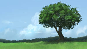 Tree by mclelun