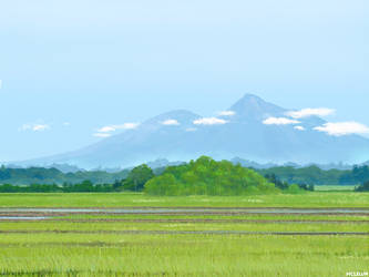 Paddy Field by mclelun