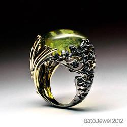 Amber ring 1 by GatoJewel-DerKater