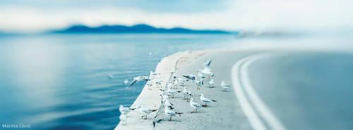 Seaside by MarinaCoric