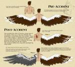 P - Dorrien's wing concept by IrishWolven