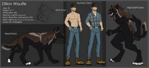 P - Dillon Woulfe - Werewolf Ref by IrishWolven