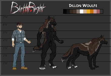 BirthRight- Dillon Reference Sheet by IrishWolven