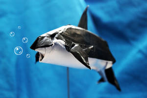 Killer whale origami by KhangPhin