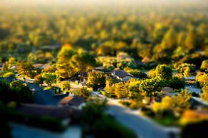 Tiny Town by mree