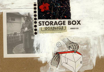storage box by the-Px-corporation