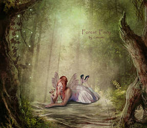 Forest Fairy by CaryAndFrankArts