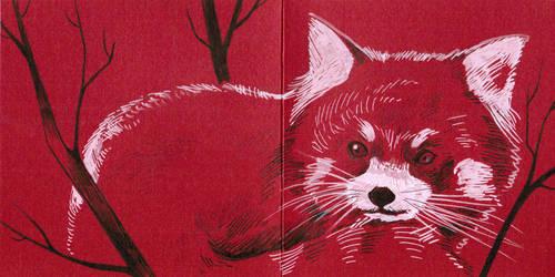 Red panda postcard by 3lda