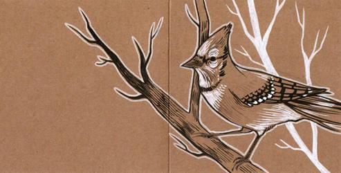 Bird postcard by 3lda
