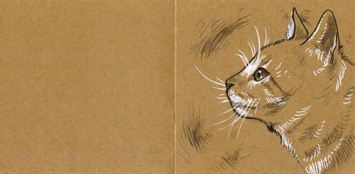 Cat postcard by 3lda