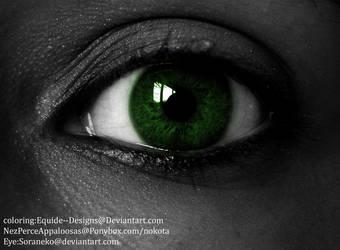 Eye-green,1 by Equide--Designs