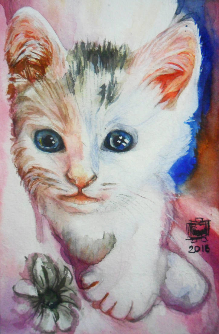 The Kitten with the Beautiful Eyes by SufiaEasel