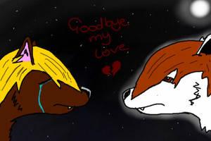 Goodbye My Love by kimbo2450