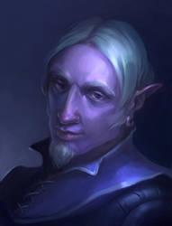 Night Elf by Charmrock
