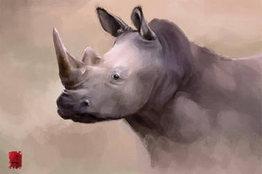 Rhino by Nutfullin