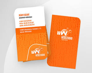 Liw business card by liway