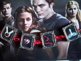 Twilight Saga Bracelet by PushyGirlTorella
