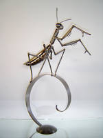 'The Mantis' by verymetal