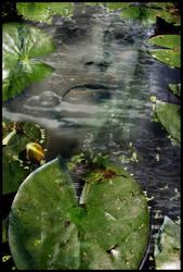Water by Sarajane-Helm