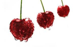 cherry day by dndnma