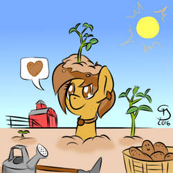 Homegrown by Glim-Glam