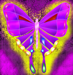 draw of butterfly paint tool sai  by JohanAlexander19