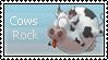 Cows Rock by renatalmar