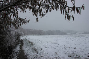 A little snow... some nice pictures #05 by Gerfer