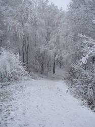 Just Winter... by ViRPo