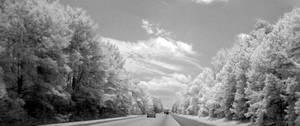 infrared by Rihonus