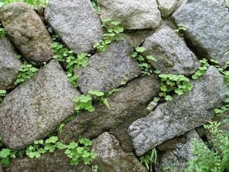 Japanese stone wall, Kyoto.raw by reschool
