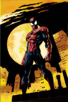Spiderman by rrice