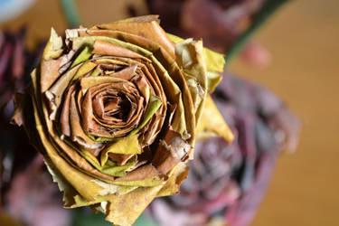 roses of leaves by BrokenSpaceAngel