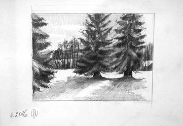 Pencil Sketch by ocsana