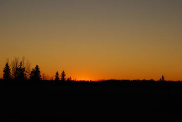 Treeline Sunset by midnightstouchSTOCK