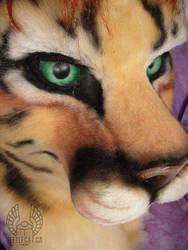 Sunstreak: Cougar-Tiger by Beetlecat