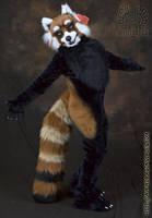 Red Panda Fursuit Costume by Beetlecat